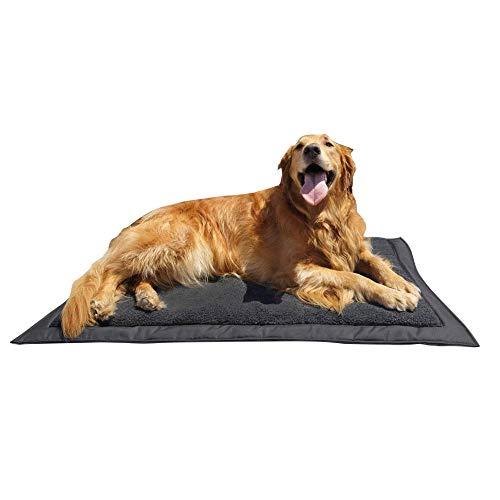 Lightspeed Outdoor Self Inflating Travel Dog Bed