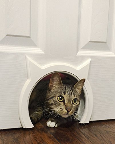 The Kitty Pass Interior Cat Door Hidden Litter Box Pet Door for Cats up to 21 lbs Pet Box