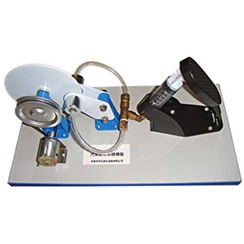 Clicke Auto-Bremsen-System Modell Elektrische hydraulische Bremse Physikalische Praxis Lehrinstrumente Zeigen die Struktur und Eigenschaften von Auto-Bremsen