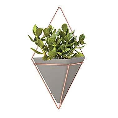 Umbra Trigg Hanging Planter Vase & Geometric Wall Decor Container - Great For Succulent Plants, Air Plant, Mini Cactus, Faux Plants and More, Concrete Resin/Copper