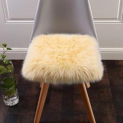 Softlife Faux Fur Sheepskin Area Rug Shaggy Wool Carpet for Bedroom Living Room Home Decor