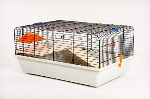 Ollesch D&S Vertriebs Cage à souris et hamster avec accessoires 59 x 38 x 29 cm