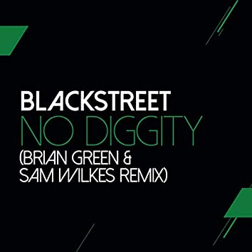 No Diggity (Sam Wilkes & Brian Green Remix)