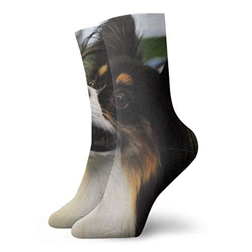hdyefe Beautiful Papillon Dog Novedad Calcetines Cortos de tripulación Calcetines Deportivos Casuales Deportivos de Tubo 30 cm / 11,8 Pulgadas