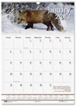 product image for House of Doolittle 373 Wildlife Scenes Monthly Wall Calendar, 15-1/2 x 22, 2016