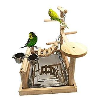 Aire de jeu pour oiseaux Aire de jeu, perroquet pour gymnase, parc pour enfants Parc à bébé Échelles à oiseaux pour exercices Playgym avec chargeur Tasses Accessoires pour cages Jouet pour exercice
