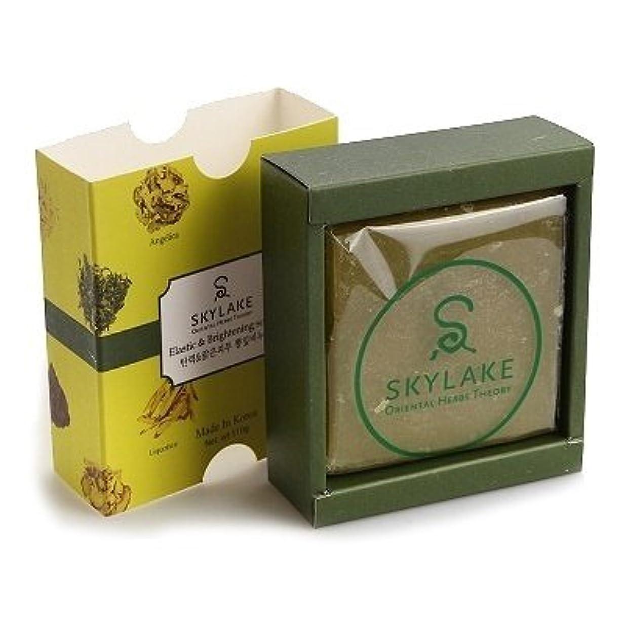 面積かんたん男やもめ[1+1]ハヌルホス[Skylake] 漢方アロマ石鹸Oriental Herbs Theory Soap (ハリ改善&ブライトニング用)