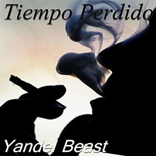 Yandel Beats