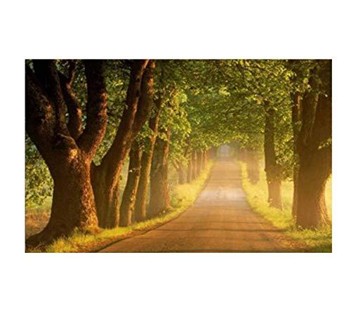 Peinture Diamant Forest Road Diamant Rond