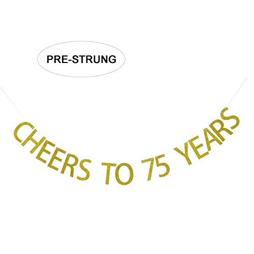 Cheers to 75 Years Banner Celebration 75 Years Old 75th Birthday Hanging Bunthing Party Decorations