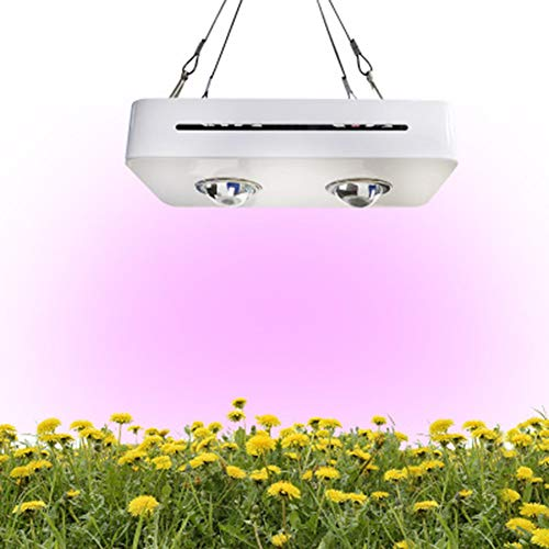 100w High-Power LED Plant Fill Light Full Light Growth Light Indoor Photosynthesis Light Noiseless, Durable, Suitable for Indoor Planting UK