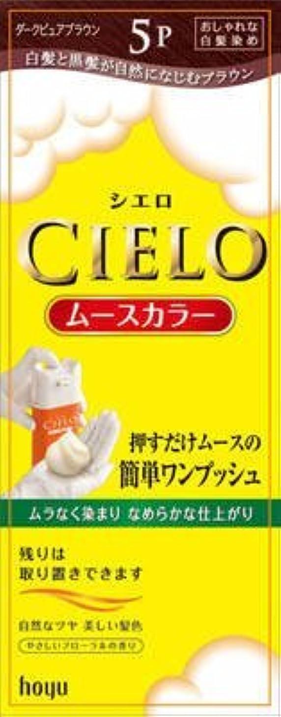 亜熱帯研磨剤曲がったシエロ ムースカラー 5P ダークピュアブラウン × 10個セット