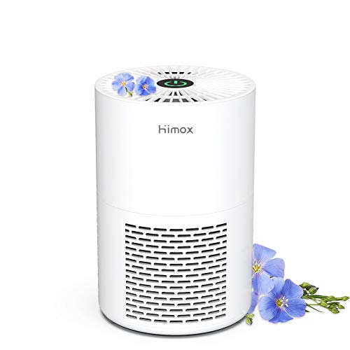 HIMOX Small Air Purifiers for Home, True HEPA Filter Room Air Cleaner for Allergies and Pets, 26dB Super Quiet for Bedroom Office Desk, Eliminates Smoke, Mold, Pollen, Dust - Low Power & USB Portable H-07