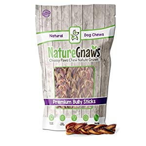Nature Gnaws Braided Bully Sticks for Dogs – Premium Natural Beef Bones – Long Lasting Dog Chew Treats for Small and Medium Breeds – Rawhide Free – 6 Inch