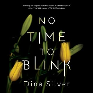 No Time To Blink audiobook cover art