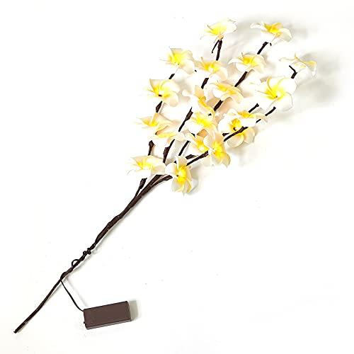 HYKITDAY 2 luces de rama de ramas con 20 luces LED LED artificiales funciona con pilas, decoración para interiores y decoración del hogar