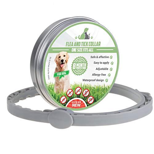 MENGZF Collare Antiparassitario Cani,Collare per pulci 8 Mesi di Protezione per Medio/Grande Cani e Cuccioli, Lunghezza Regolabilee Impermeabile, Stop morde e prurito,Collare antipulci Cane