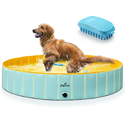 """iPettie Foldable Dog Pool, Collapsible Dog Pool, Dog Swimming Pools for Large Dogs, Kiddie Pool for Dogs, Cats & Kids, Mint & Yellow, 63"""" x 12"""""""