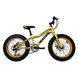"""IBK Bici Bicicletta 20"""" Fat Bike 6 Velocita Bimbo Bambino MTB Acciaio Cambio Shimano (Arancione)"""