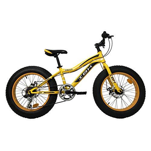IBK Bici Bicicletta 20' Fat Bike 6 Velocita Bimbo Bambino MTB Acciaio Cambio Shimano (Arancione)