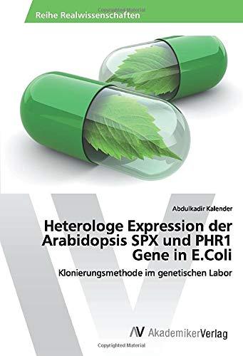 Heterologe Expression der Arabidopsis SPX und PHR1 Gene in E.Coli: Klonierungsmethode im genetischen Labor