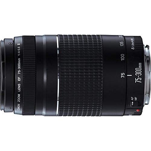 Zoom teleobiettivo leggero con obiettivo USM, EF 75-300mm f/4-5.6 III