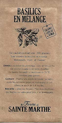 Basilics en Mélange 2 : Mammouth, Thym, Pourpre - environ 300 graines - SEM03 - Opportunité - Quantité Limité