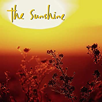 The Sunshine (feat. Antonia Marquee)