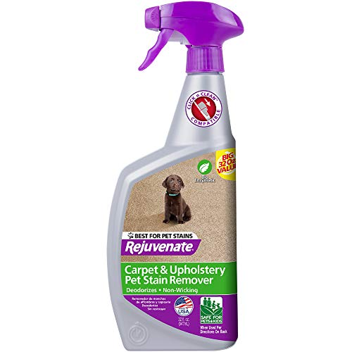 Product Image of the Rejuvenate Carpet & Upholstery Spot Remover Stain Cleaner Bio-Enzymatic Professional Strength Pet Stain and Pet Odor Eliminator