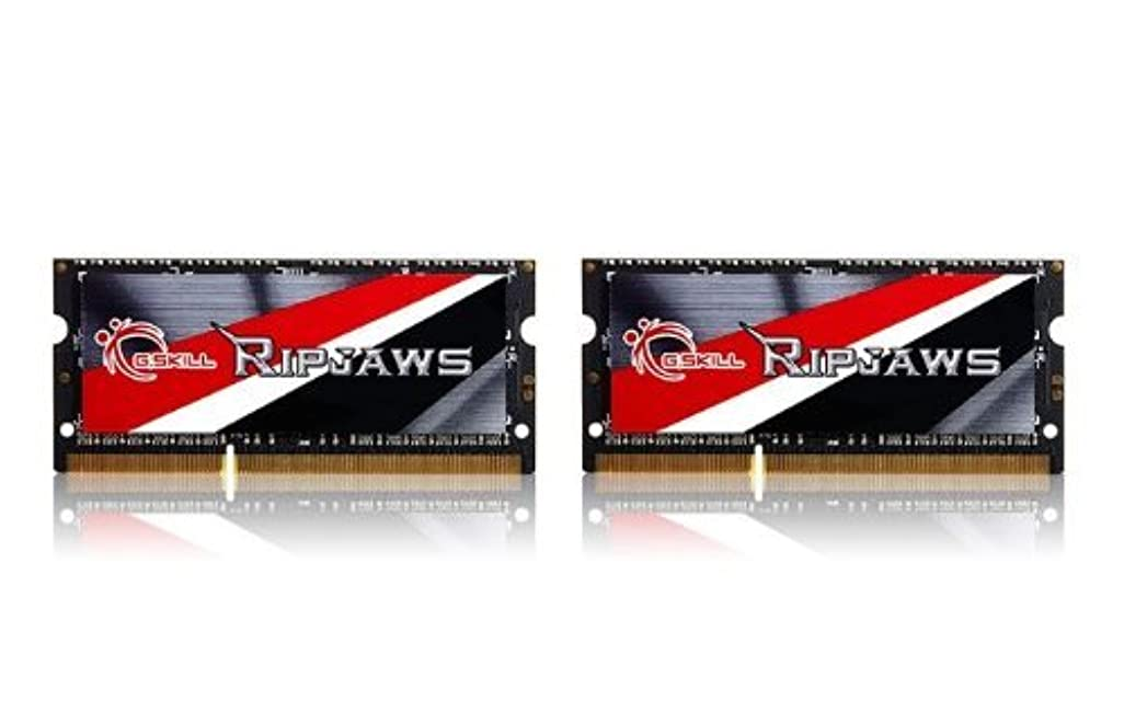 スチュワード誕生日ディレイG.SKILL Ripjaws Series 16GB (2 x 8G) 204-Pin DDR3 SO-DIMM DDR3L 1600 (PC3L 12800) Laptop Memory F3-1600C11D-16GRSL [並行輸入品]
