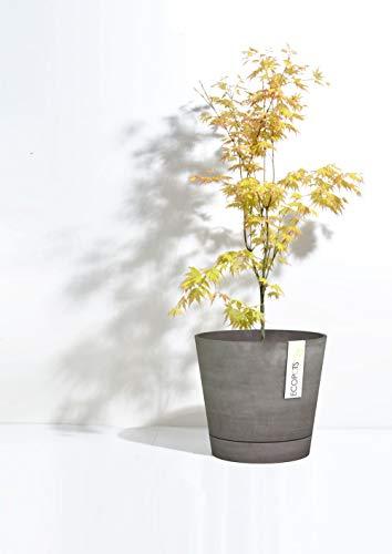 Ecopots Pot de fleurs Venice Smartpot en plastique | Ø 30 cm | Pot de fleurs écologique pour l'intérieur et l'extérieur | Gris