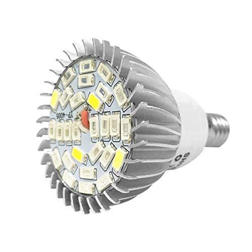 LED Pflanzenlampe E14 Vollspektrum Pflanzenleuchte Glühbirne Weitwinkel Wachstumslampe Sonnenähnlich Pflanzenlicht für Gewächshaus Pflanzen Gemüse Zimmerpflanzen Garten Hydroponische