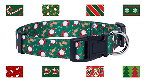 Top 10 christmas collars for dogs for 2020