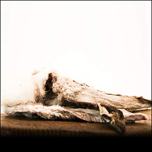 George & Bobs Kaninchenohren mit Fell - 1000g | Leckerer Snack für Hunde zur unterstützung der Darmreinigung | Natürlich