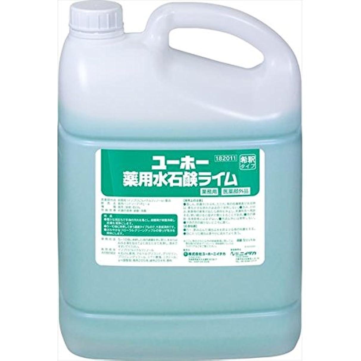 ウェイター本物上昇ユーホーニイタカ:薬用水石鹸ライム 5L×2 182011