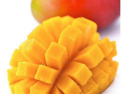 訳あり 宮崎県産 完熟アップルマンゴー 宮崎マンゴー 約1kg ご予約