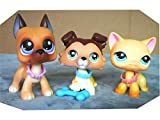 LPSOLD LPS Collie 58 Paw Up Brown Blue Eyes LPS Great Dane 244 Purple Eyes Dog Puppy LPS Shorthair Cat 339 Yellow Blue Eyes Kitty with Accessories Kit Collection Figure Kids Boys Girls Gift Set