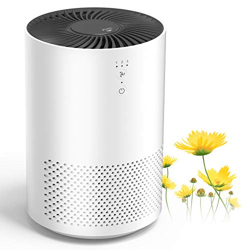 Intelabe HEPA Air Purifier Air Filter with Fragrance Sponge Air Cleaner Eliminate Smoke,...