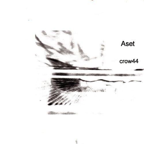 Crow44