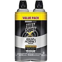 2-Pack Hot Shot Wasp And Hornet Killer 14 Oz