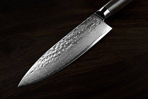 KAN Core Chef Knife 8-inch VG-10 67 layers Damascus Ambidextrous (Hammered VG-10 Blade, G10 handle)