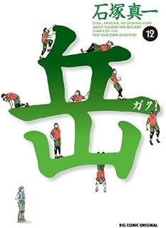 Gaku (Minna No Yama) Vol.12 [In Japanese] by Shinichi Ishizuka (2010-05-04)