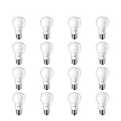 LED vs CFL vs Incandescent vs Fluorescent: Which Shines