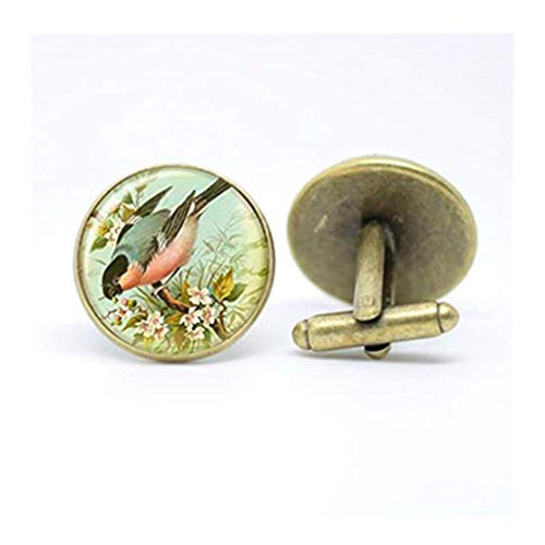 heng yuan tian cheng Bullfinch Tuin Vogel Manchetknopen in Brons Setting, Dome Glas Sieraden, Pure Handgemaakt