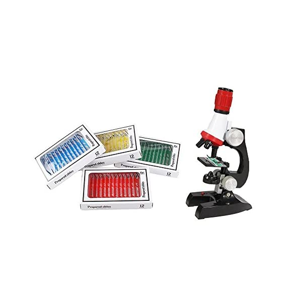 Zerich 48PCS Kids Plastic Prepared Slides for Microscope of Animals Insects Plants Flowers Sample Specimens 81053