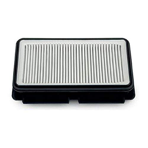 Rowenta RS-RT4109 HEPA-Filter