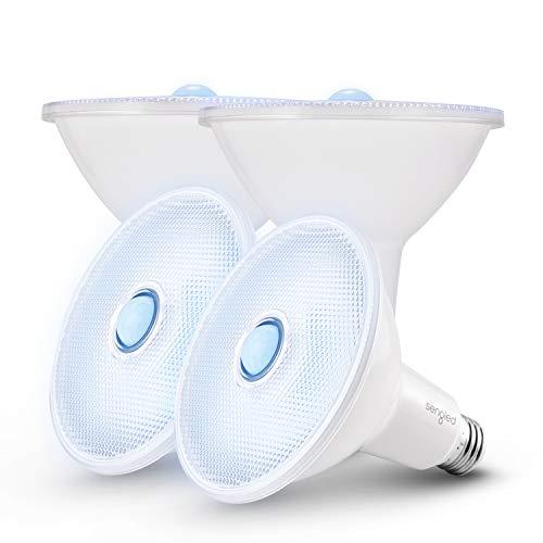 Sengled Motion Sensor Flood Lights Outdoor Dusk to Dawn Security Light Bulbs, E26 Base PAR38 Motion Activated 5000K Daylight, 1500LM, Waterproof LED Light Bulbs for indoor-outdoor, 4 Pack 4rd Gen