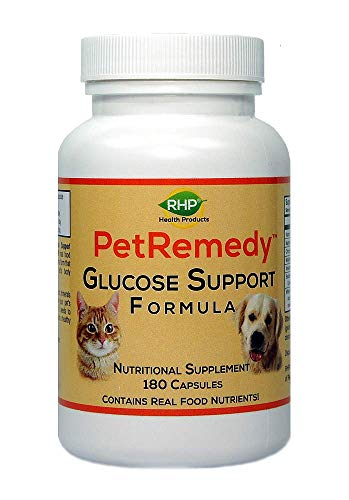 Best Natural Supplements for Diabetic Dogs