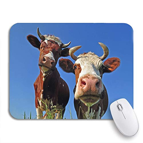 Mauspad Füttern Sie Kühe Auf Sommerweide Village Farm Grazing Prairie 2 Größen Notebooks Computer Gummirücken Langlebig Rutschfest Mousepad Gedruckte Mausmatten Spiel Diy Office W 25X30cm