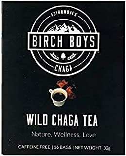 Chaga Tea Bags (16 Count) - Wild Crafted Antioxidant Morning Tea